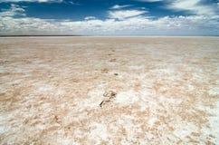 Il piede fa un passo sul lago Frome, un lago di sale in Australia Meridionale a distanza Immagini Stock Libere da Diritti