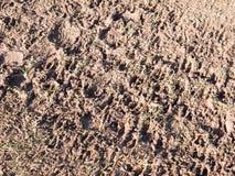 il piede fangoso di struttura dell'agricoltura del paese del pavimento del percorso stampa Immagini Stock