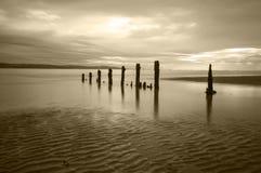 Il pilastro del molo rimane su una spiaggia fotografia stock libera da diritti