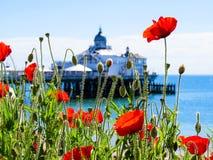 Il pilastro ed i papaveri di Eastbourne Fotografia Stock