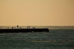 Il pilastro ghiacciato di Trieste Immagine Stock Libera da Diritti