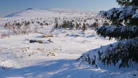 Il plateau di inverno della montagna Maly Iremel video d archivio