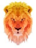 Il poligono del leone triangola l'animale lowpoly Fotografia Stock Libera da Diritti