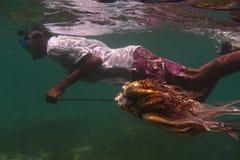 il polipo sull'isola di curioso è fotografia stock libera da diritti