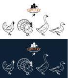 Il pollame taglia i diagrammi Fotografia Stock Libera da Diritti