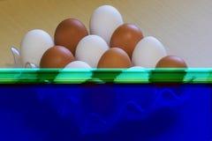 Il pollo bianco e scuro eggs in uno scaffale Fotografia Stock Libera da Diritti