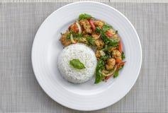 Il pollo croccante cucinato con basilico mangia con riso Fotografia Stock