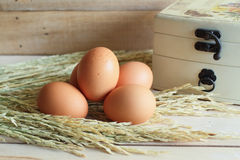 Il pollo eggs con riso sulla tavola di legno e sulla scatola di legno Fotografia Stock