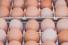 Il pollo eggs in un vassoio per l'esposizione del mercato Fotografia Stock Libera da Diritti