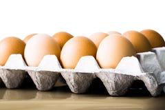 Il pollo eggs in vassoio dell'uovo del cartone o del cartone Fotografie Stock