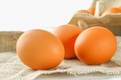 Il pollo marrone crudo eggs in un vassoio del cartone con le caselle sul licenziamento su di legno bianco Ingredienti per cucinar Fotografia Stock