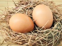 Il pollo marrone del primo piano eggs in un nido della paglia Uova organiche fresche Fotografia Stock