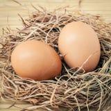 Il pollo marrone del primo piano eggs in un nido della paglia Uova organiche fresche Fotografie Stock Libere da Diritti
