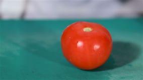 Il pomodoro maturo rosso ha tagliato a metà dal coltello culinario del ` s del cuoco unico stock footage