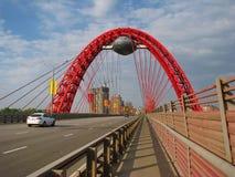 Il ponte Immagini Stock