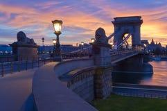 Il ponte a catena ed il parassita parteggiano, Budapest, Ungheria Immagini Stock