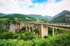 Il ponte concreto di Durdevica dell'arco sopra Tara River Canyon, la valle della montagna e la foresta abbelliscono nel parco naz Immagine Stock Libera da Diritti