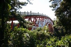 Il ponte coreano tradizionale Vista sul giardino botanico nell'isola di Jeju, giardino botanico, isola vulcanica Fotografia Stock Libera da Diritti