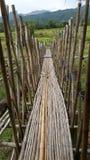 Il ponte del bello e buon bambù di idea in Tailandia Fotografia Stock Libera da Diritti