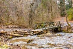 Il ponte del ferro sopra il piccolo fiume nei colori della primavera della foresta, crescenti pianta la formica i tronchi morti fotografia stock libera da diritti