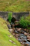 Il ponte della strada della montagna Fotografie Stock