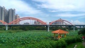 Il ponte ed il padiglione a SHENZHEN, CINA, ASIA Fotografie Stock Libere da Diritti