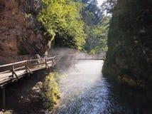 Il ponte sopra la gola di Vintgar ed il fiume di Radovna vicino ha sanguinato, la Slovenia Immagini Stock Libere da Diritti