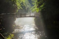 Il ponte sopra la gola di Vintgar vicino ha sanguinato, la Slovenia Fotografie Stock
