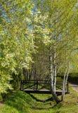 Il ponte sopra il ruscello nel villaggio immagine stock libera da diritti