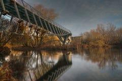 Il ponte vivente Fotografia Stock Libera da Diritti