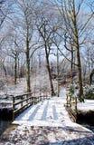 Il ponticello in inverno fotografie stock