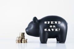 Il porcellino salvadanaio spende o risparmia? Immagine Stock Libera da Diritti