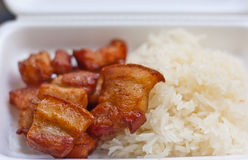 Il porco fritto si è mescolato con l'erba ed il riso appiccicoso Immagine Stock Libera da Diritti