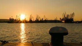 Il porto del carico cranes la siluetta sul tramonto stock footage
