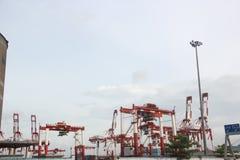 Il porto di Shekou a Shenzhen Immagini Stock