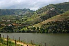 Il Portogallo, valle di Douro Fotografie Stock