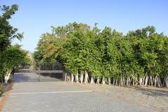 Il portone di wicket del parco yuanboyuan, adobe rgb fotografie stock