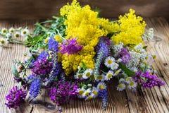 Il prato dell'estate fiorisce il mazzo fotografie stock