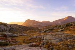 Il prato ed il pascolo alpini hanno messo in mezzo della catena montuosa di elevata altitudine ai tramonti Le alpi italiane, dest Immagini Stock
