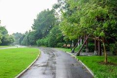 Il prato inglese e la strada verdi fotografia stock