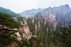Il precipizio della valle ad ovest del mare Fotografia Stock