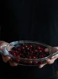 Il preparato della bacca in glas stona nelle mani di un panettiere Fotografia Stock