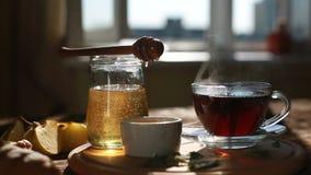 Il primo piano è miele autentico lentamente scorre da un cucchiaio Prima colazione per una persona Cerimonia di tè Primo piano di archivi video