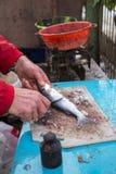 Il primo piano al pescatore passa la pulizia del pesce fresco del branzino Immagini Stock