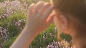 Il primo piano confuso della mano della ragazza corregge il campo del fondo dell'acconciatura all'aperto con i fiori della lavand video d archivio