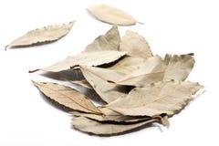Il primo piano del mucchio della baia asciutta lascia la spezia su fondo bianco fotografia stock