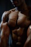 Il primo piano del torso nudo del modello afroamericano dell'uomo che posa e che mostra l'ente perfetto muscles in dettaglio immagini stock