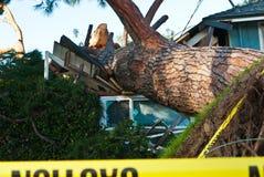 Il primo piano dell'albero si è schiantato nella casa Fotografia Stock Libera da Diritti