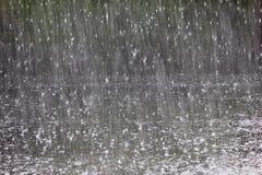 il primo piano della pioggia Immagine Stock