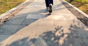 Il primo piano delle gambe della donna in scarpe cammina verso sul sentiero nel bosco del parco il giorno soleggiato video d archivio